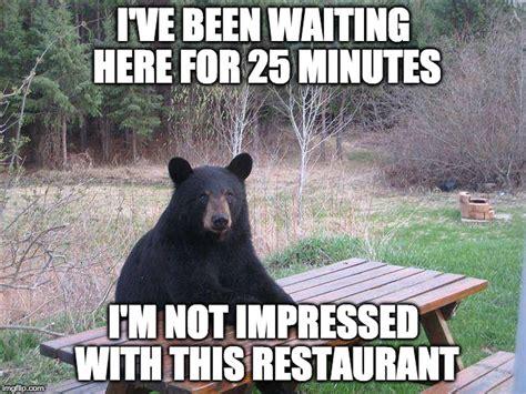 Bear At Picnic Table Meme - bear at picnic table imgflip