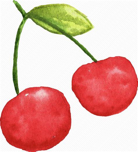 cuisine cherry cherry cuisine food fruit fruits watercolor