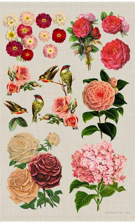 free floral images 17 best images about crafy vintage images on pinterest