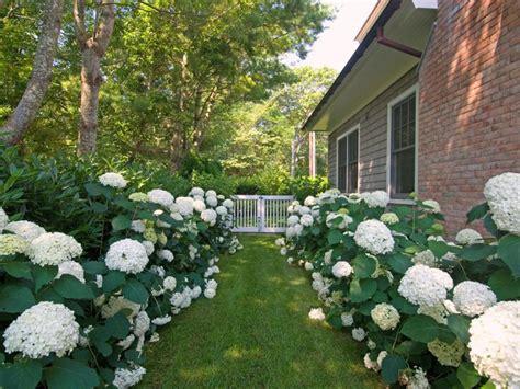 formal garden ideas pictures of formal gardens diy