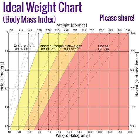 ideal weight chart ideal weight chart herbs info
