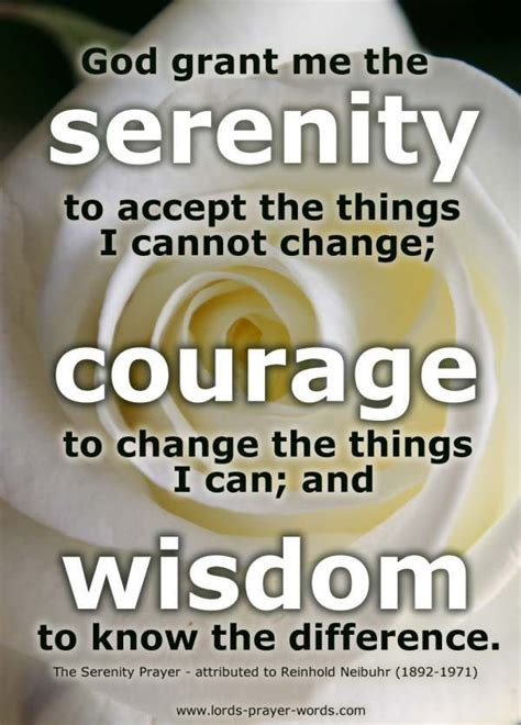 afraid to discovering the courage to again books best 25 serenity prayer ideas on