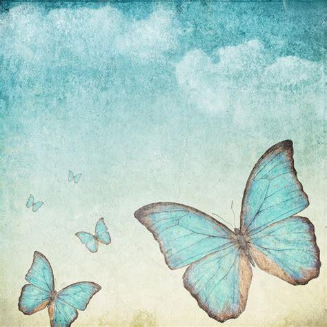 imagenes vintage azul fondo vintage con una mariposa azul fotos de stock