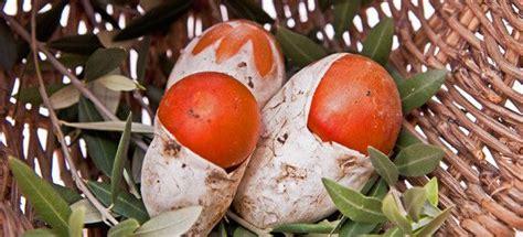 cucinare gli ovuli cucinare funghi ovoli cucinarefunghi