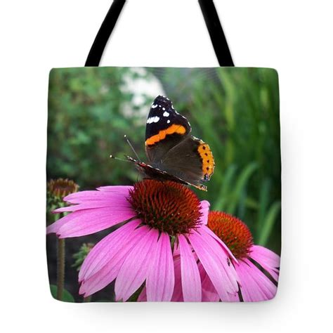 Corrine Elizabeth Bags admiral butterfly taking a sip of nectar photograph by