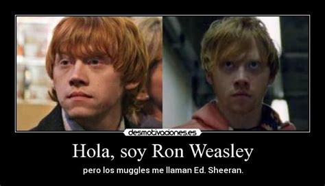 Ron Weasley Meme - ron weasley and ed sheeran memes
