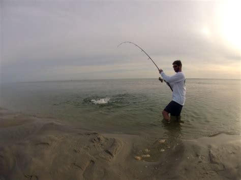 cape cod fishing fishing brewster cape cod a tropical paradise
