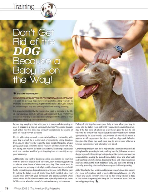 articles on dogs american magazine articles by michael wombacher