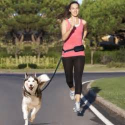 best harness for running best free harness for running
