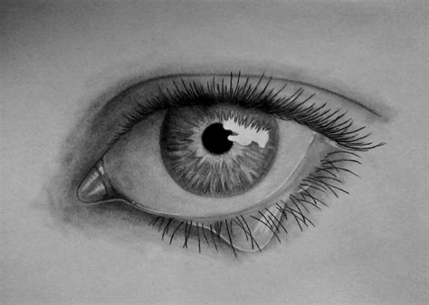 imagenes blanco y negro para dibujar a lapiz fotos en blanco y negro o dibujos a l 225 piz im 225 genes