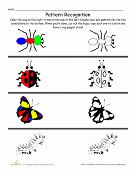 pattern recognition project ideas patterns and colors bugs coloring page education com