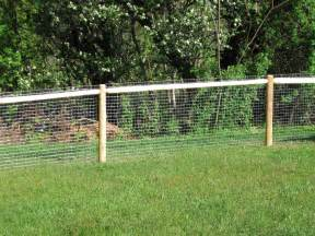 gallery for gt dog fence