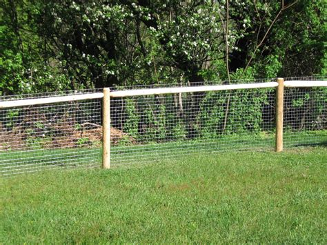 fence top fencing ideas backyard fencing for dogs