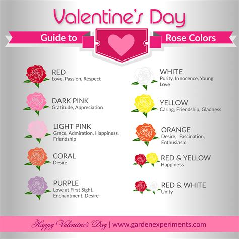 the meaning valentines day the meaning of colors a s day guide
