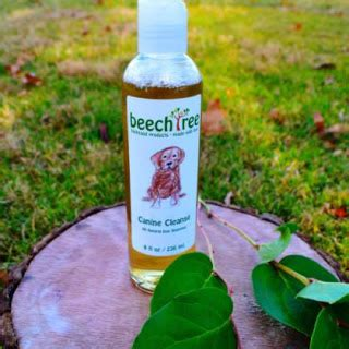 Look Out For Detox 320 by Knows Best Beechtree Products Are Feel Products
