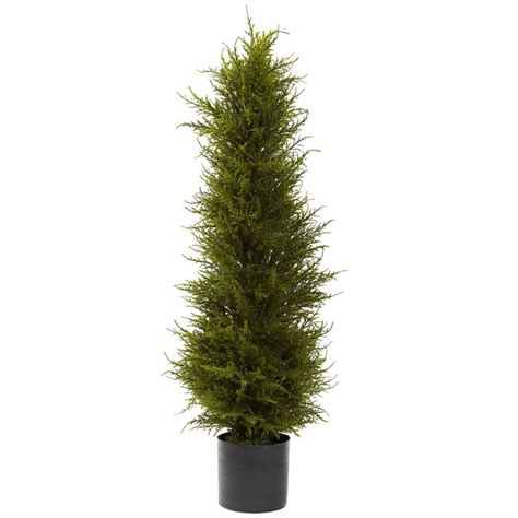 romano 5 ft hedyotis topiary tree 50 10007 r