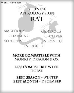 qualities of rat new year your zodiac profile rat all about me rat