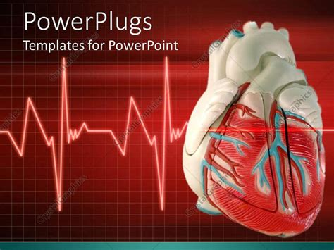 Powerpoint Template A 3d Heart With An Eco Cardiogram Cardiology Powerpoint Template