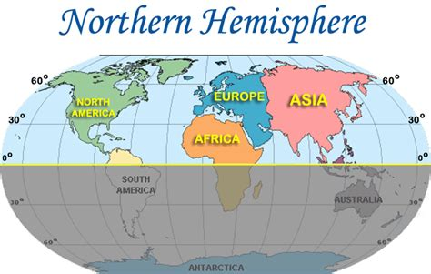 types map of the northern hemisphere ornamental plant