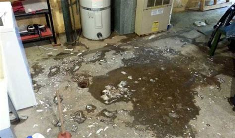 sewage in basement sewage cleanup in basement home design