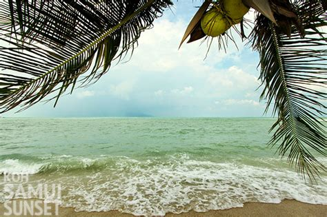 new year 2018 koh samui koh samui in january weather what to expect and 15