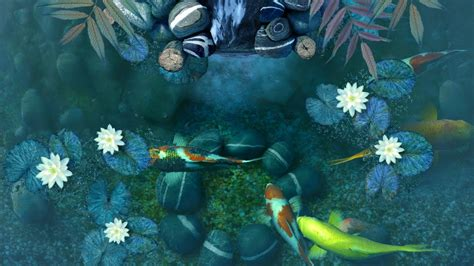 koi live wallpaper full version apk download beautiful koi pond live wallpaper