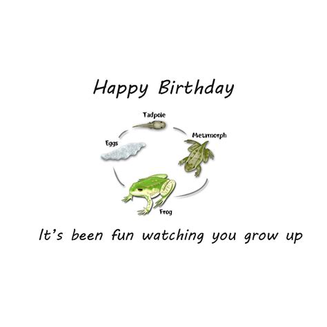 13th Birthday Quotes 13th Birthday Quotes For Son Quotesgram