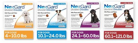 nexgard for dogs buy nexgard for dogs chewables 6 month supply 61 95