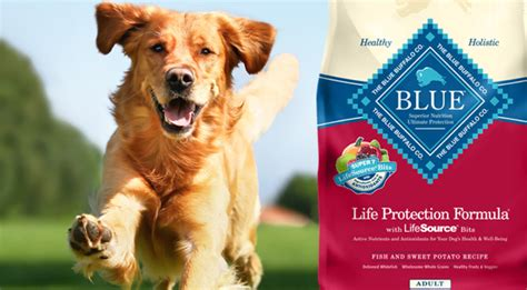 blue buffalo puppy food recall the blue buffalo co food company recalls a limited batch of food