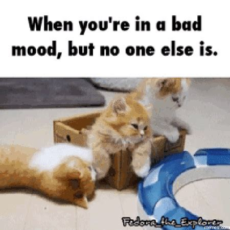 Bad Mood Meme - home memes com