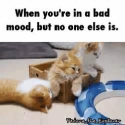 Bad Mood Meme - home memes com