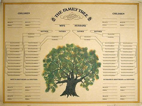 the family tree italian genealogy guide how to trace your family tree in italy books italian family genealogy