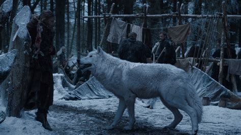 Castle Bran by Direwolves Game Of Thrones Wiki
