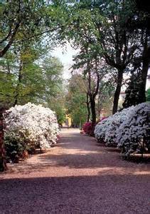 giardino dei semplici firenze il giardino dei semplici florence live