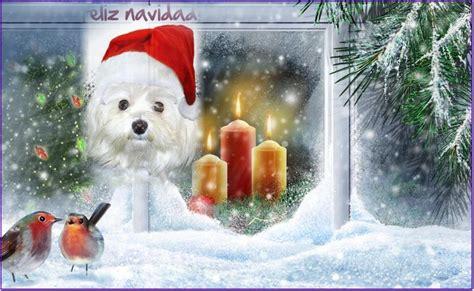 imagenes feliz navidad con perros im 225 genes de navidad para etiquetar en google plus