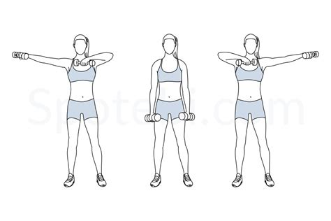 dumbbell swing benefits dumbbell side swings illustrated exercise guide
