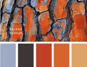 what colors go with orange best 25 burnt orange bathrooms ideas on pinterest