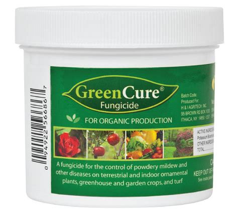 fungicide for upholstery greencure fungicide seed pest and disease urban farmer