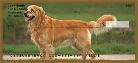 golden retriever personal checks golden retriever checks