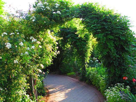 a walk in the garden photograph by elaine haakenson