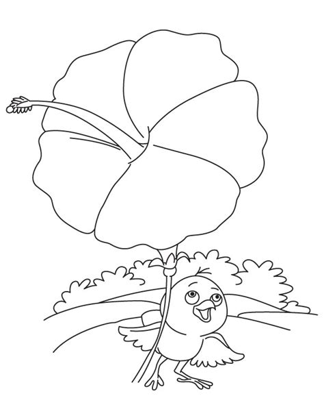 umbrella bird coloring page coloring pages