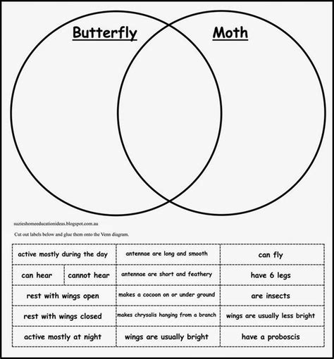 venn diagram for ab best 25 venn diagrams ideas on venn diagram r venn diagram printable and venn