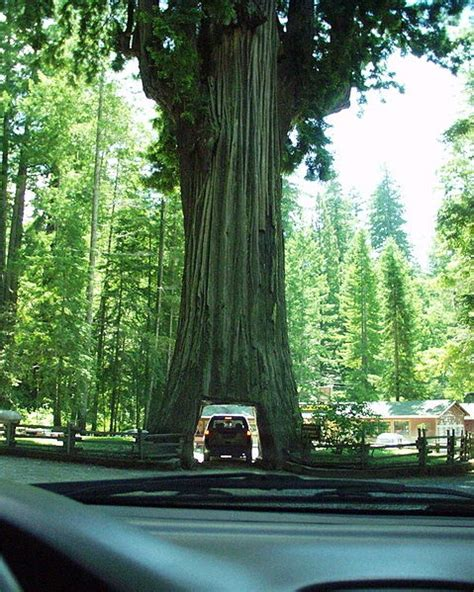 best hotels northern california the top 5 scenic drives in northern california