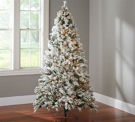 faux flocked lighted tree contemporary christmas trees sacramento by pottery barn