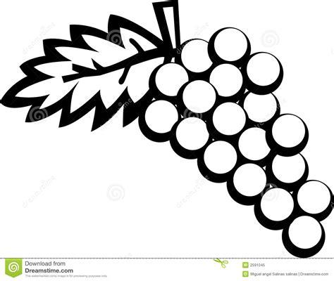 fruta blanco y negro fotos de archivo imagen 18950683 frutas de las uvas foto de archivo libre de regal 237 as