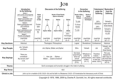 themes in book of job book of job overview insight for living ministries