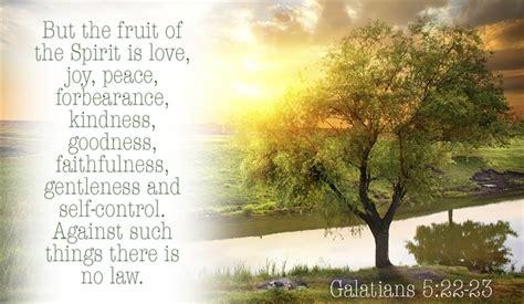 7 fruit of the spirit the fruit of the spirit veldaville