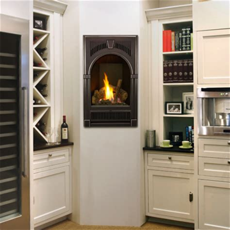 Portrait Fireplace by Gas Fireplaces B D Stoves