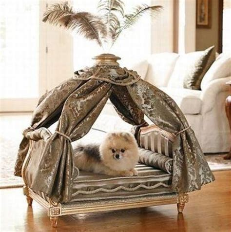 fancy dog bed 20 modern pet beds design ideas for small dogs