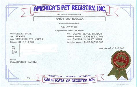 how to akc register a puppy without papers great dane rescue in ohio harlequin great dane rescue adoptable danes